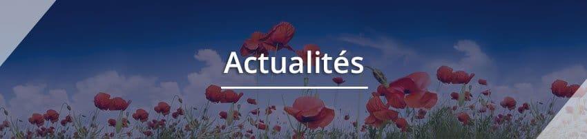 """Titre """"Actualités"""" avec une photo en fond représentant des coquelicots. Sophrologie, Hypnose, Synergie sur Marseille"""